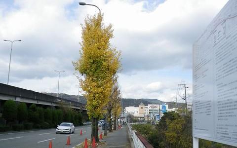 北大阪急行線延伸工事 12/10